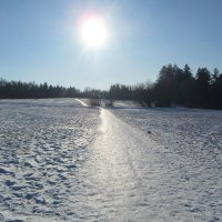 Солнечная дорожка :: Mariya laimite