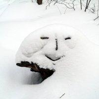 И снеговик лесной мне улыбался..:) :: Андрей Заломленков