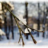 природа зимой... :: Валентина. .