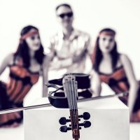 Ее величество Скрипка! :: Вячеслав Ложкин