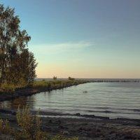 Финский залив. :: Любовь Анищенко