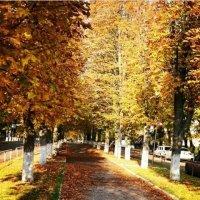Осень мое любимое время года :: Натали