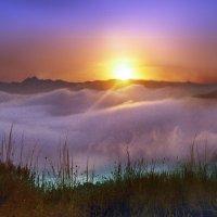 ...там за туманами... :: viton