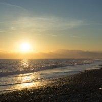 Прогулка вдоль моря :: Михаил Онипенко