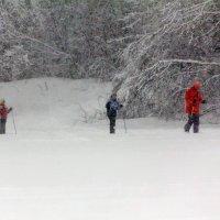 Лыжники :: Александр