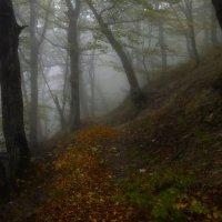 Осенний серпантин..... :: Юрий Цыплятников