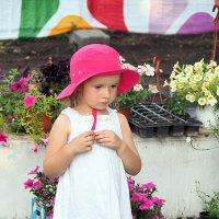 красная шапочка или выбрать аленький цветочек :: Олег Лукьянов
