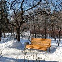 Одинокая скамейка... :: Анатолий Колосов