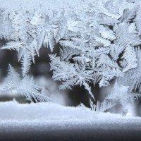 Мороз. :: Владимир Усачёв