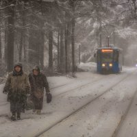 Всем тяжело в непогоду :: Андрей Лукашенко