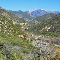 Холмы Калифорнии :: Николай Танаев