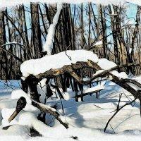 Изрядны снежные запасы за месяц до ручьёв весенних.. :: Андрей Заломленков