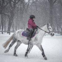 снегопад :: Елена Логачева