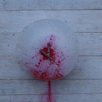 нож и кровь :: сергей пейкер