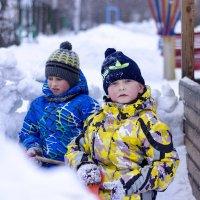 Снегокопатели... :: Светлана