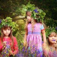 Три сестры. :: Оксана Ильченко