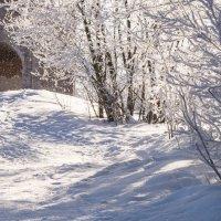 мороз и солнце... :: Инесса Терешина