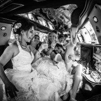 Сбежавшие невесты :: николай смолянкин