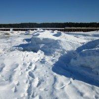 Такое разное побережье Финского залива :: veera (veerra)
