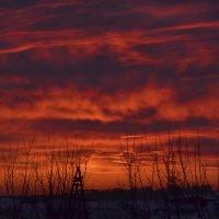 Небо на закате :: Ольга Зеленкова