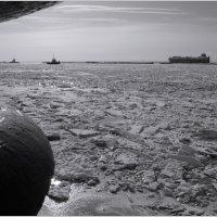 провожая ледоколы :: sv.kaschuk