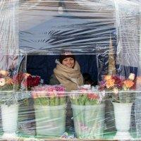 Купите цветочки. :: Анатолий. Chesnavik.