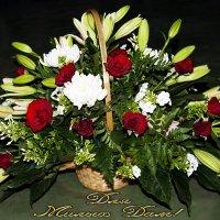 Милые Дамы! - Поздравляю Вас с Праздником 8 Марта! :: Aleks Ben Israel