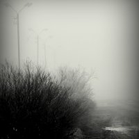 Осень. Туман. :: Николай Емелин