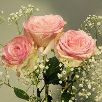 Весенний праздник :: Aнна Зарубина
