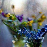 С весной! :: Марина Соколова
