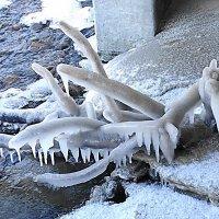 Химера из дерева и льда :: Маргарита Батырева