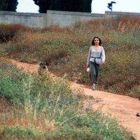 На прогулку дружно в ряд! :: Aleks Ben Israel