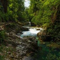 Ущелье Винтгар в Словении :: Валентина Булкина