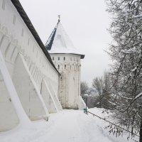 Саввино-Сторожевский монастырь :: Юрий Шувалов