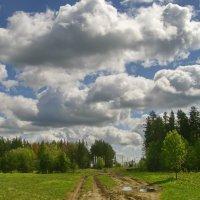 Плывут по небу облака :: lady v.ekaterina