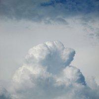 Небесный кулак :: Светлана Рябова-Шатунова