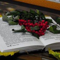 Рябина на книге :: Кристин Мин