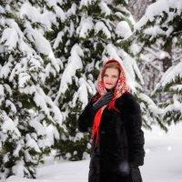 в снежном бору :: Viktor Marvel