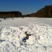В снежном море :: Мила