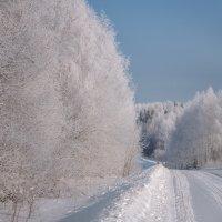 Зимняя дорога :: Fuseboy