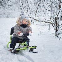 Я, зима и санки :: Марина Чаусова