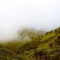Рядом с облаками. :: Лия ☼