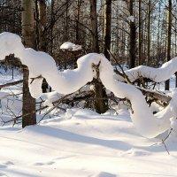 Снежный змий :: Leonid Rutov