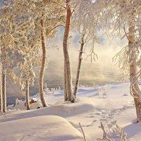 Мороз и солнце. :: Галина Подлопушная