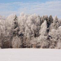 Красота природы :: Анатолий Пронько