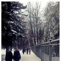 Аллеями парка :: Виктор Егорович