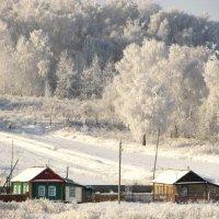 у леса на опушке жила Зима в избушке... :: Светлана