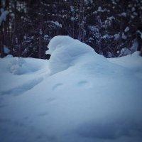 Скульптор Зима :: Наталья Ерёменко