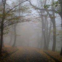 Осенний парк....... :: Юрий Цыплятников