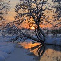 Закатное :: Виктор Фисунов